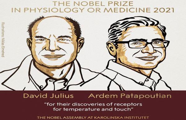 Giải Nobel Y học 2021