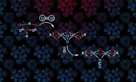Cố định nitơ trong điều kiện môi trường xung quanh