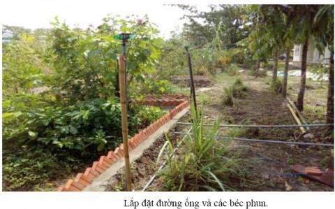 Giải pháp tưới và phun thuốc trừ sâu tự động cho vườn cây ăn trái