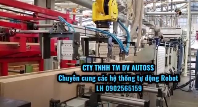 Hệ thống robot gắp gỗ