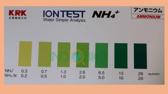 Bộ test Amoni NH4 WIT-NH4 kiểm tra nhanh NH4 trong nước thải