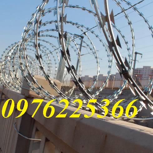 Hàng rào dây thép gai