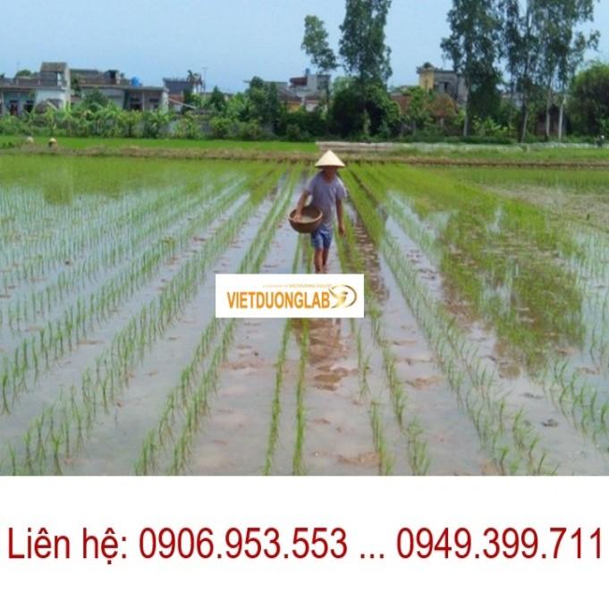 Chuyên tư vấn cung cấp thiết bị khảo nghiệm giống nông nghiệp cho các dự án
