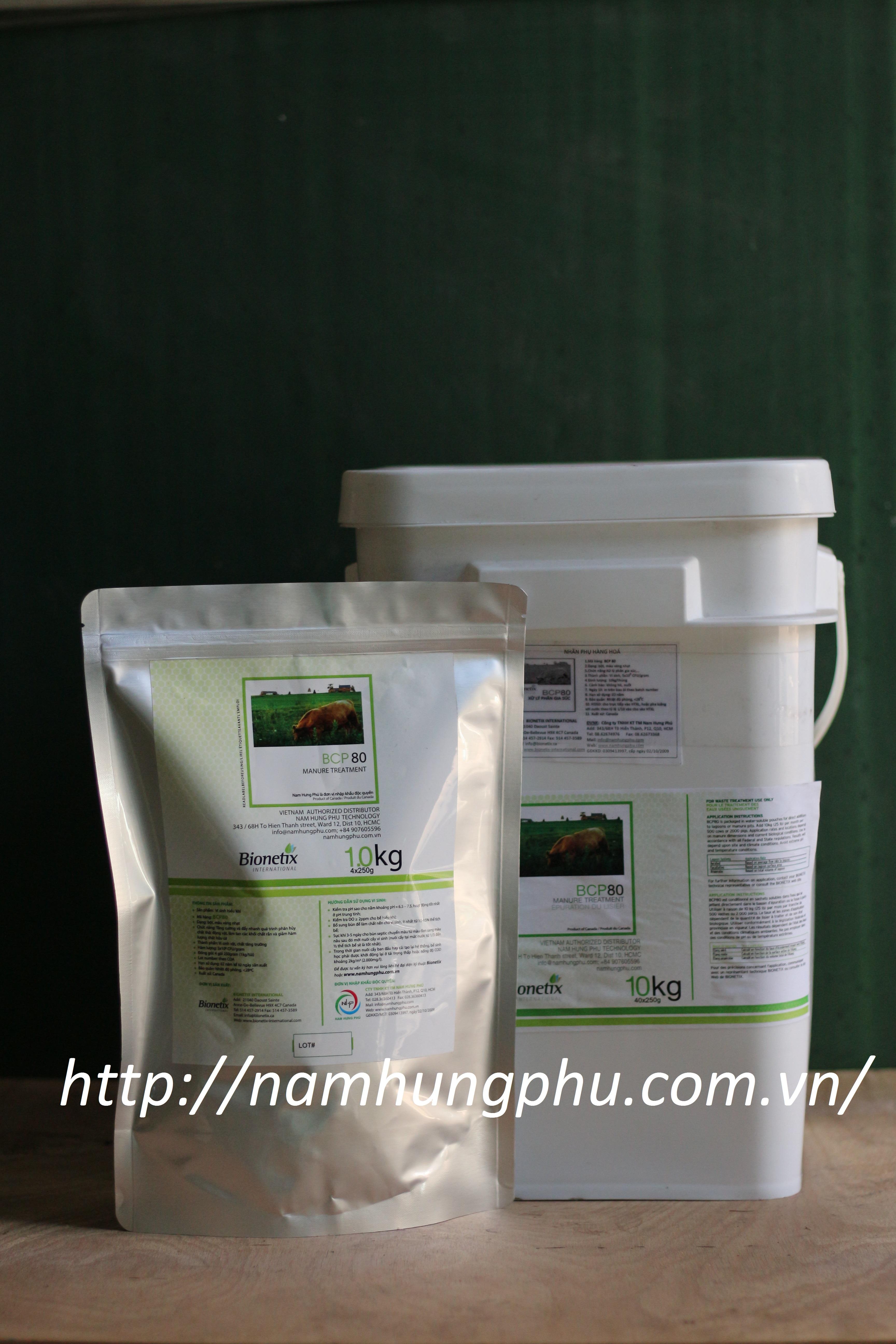 Men vi sinh xử lý nước thải cho trang trại chăn nuôi BCP80 (Bionetix)