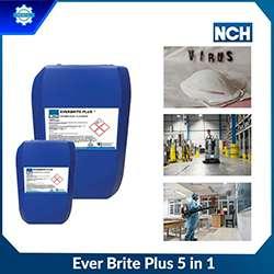 EVER BRITE PLUS 5 IN 1 - Dung dịch khử khuẩn làm sạch
