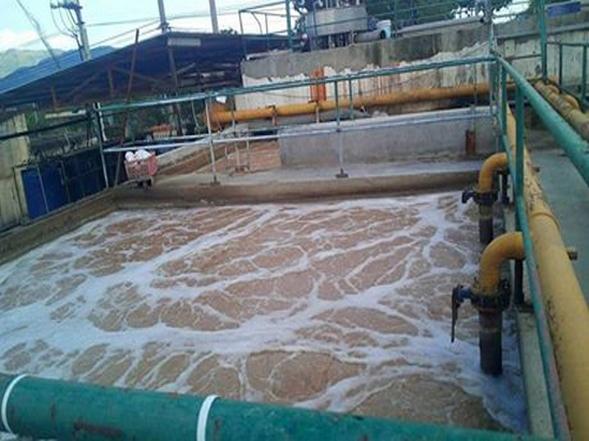 Vận hành thành công hệ thống xử lý nước thải thủy sản