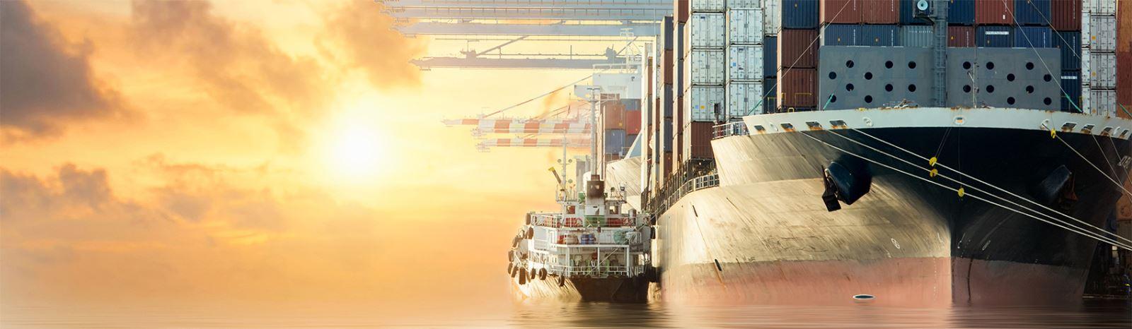 Dịch vụ vận chuyển hàng container bằng đường biển