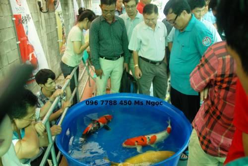 Bồn tròn 500 lít nuôi cá cảnh