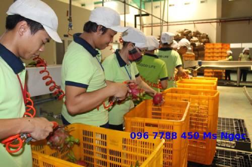 Sọt nhựa đựng hàng hóa trái cây