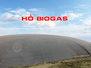 Biogas bạt nhựa HDPE