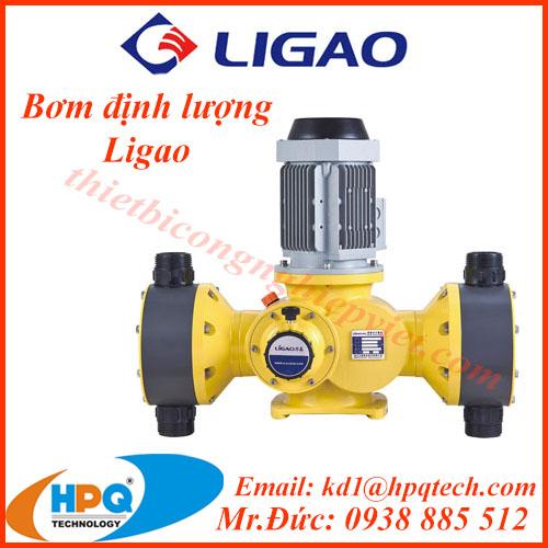 Máy bơm định lượng Ligao   Nhà cung cấp Ligao Việt Nam