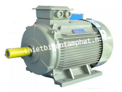 Động cơ điện YE3
