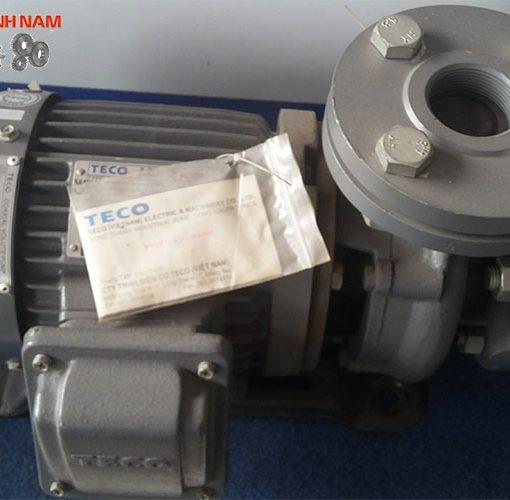 Bơm nước Teco G-30-25 2P 1/2HP 0.37kW