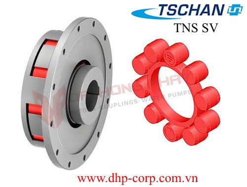 Khớp nối TSCHAN TNS SV (with internal hub)