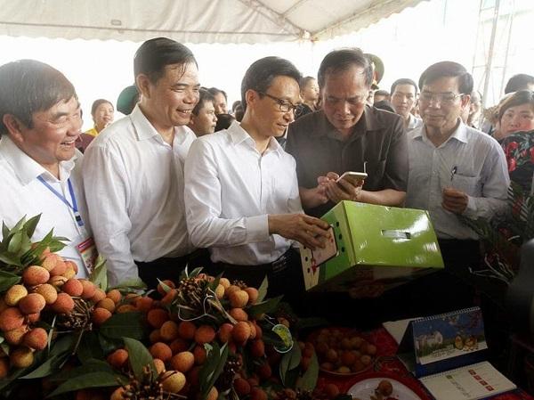 Quy trình xác thực chống hàng giả đầu tiên của Việt Nam được cấp bằng độc quyền sáng chế