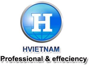 Công ty TNHH công nghiệp H Việt Nam