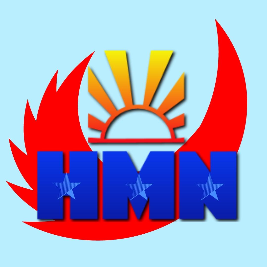 Công ty TNHH thương mại và dịch vụ Hải Minh Nam