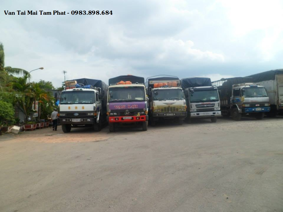 Công ty TNHH dịch vụ vận tải Mai Tâm Phát