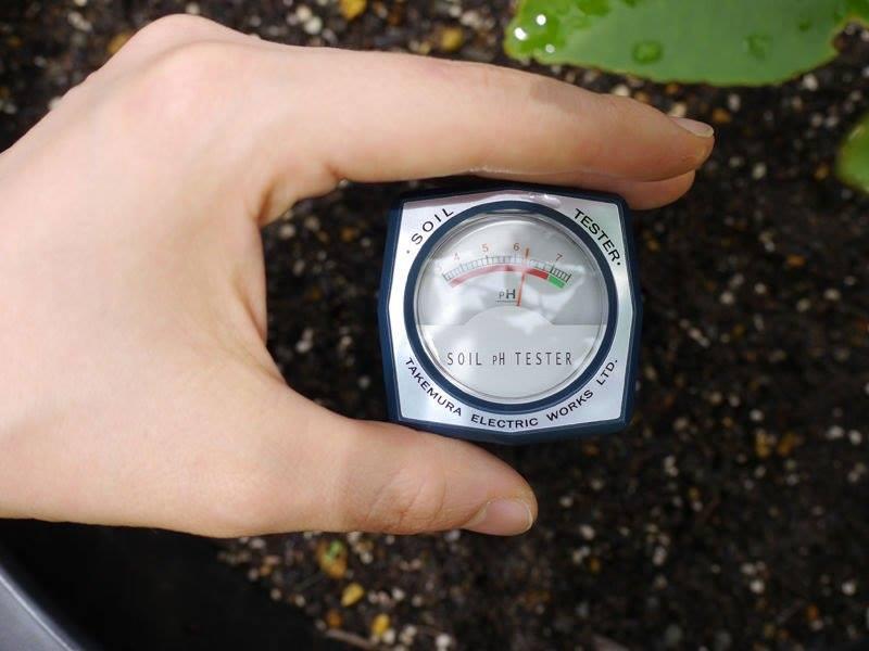 Máy đo pH & độ ẩm đất Takemura DM-15