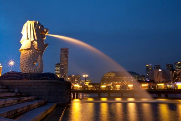 Dịch vụ nhập hàng từ Singapore về Việt Nam