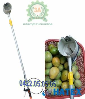 Dụng cụ kéo hái trái cây 3A 1.5m