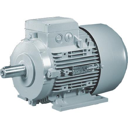 Động cơ điện 3 pha vỏ gang 1LG4/ 1LA6
