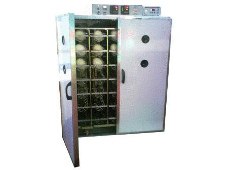 Máy ấp trứng đà điểu ATN-210