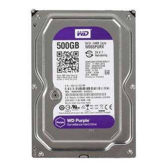 HDD Western 500GB Sata (Purple)