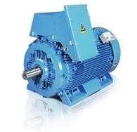 Động cơ High Voltage Induction Motors