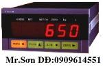 Đầu cân điện tử PT650D