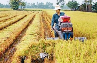 Chính sách chuyển giao công nghệ trong nông nghiệp thông qua hoạt động khuyến nông