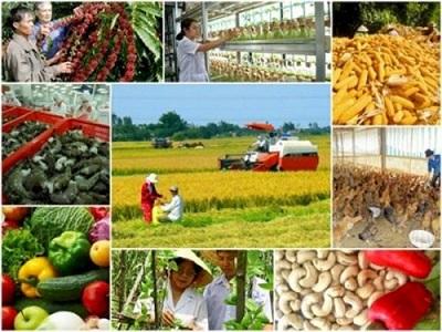 Hỗ trợ tối đa 90% phí bảo hiểm nông nghiệp cho hộ nghèo