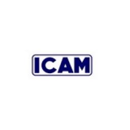 ICAM Co., Ltd